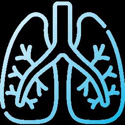 Pulmonary (Lungs)