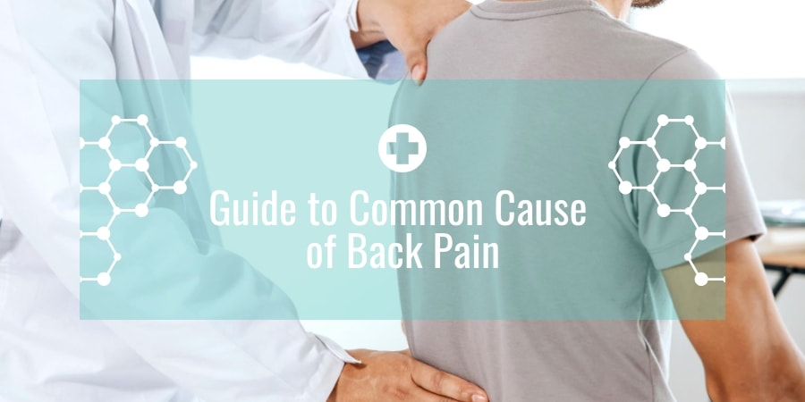 Guide to Common Cause of Back Pain